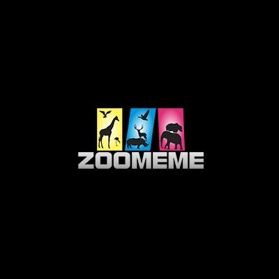 Zoomem Logo