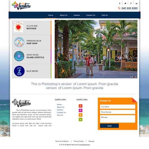 Free Style Venture Web